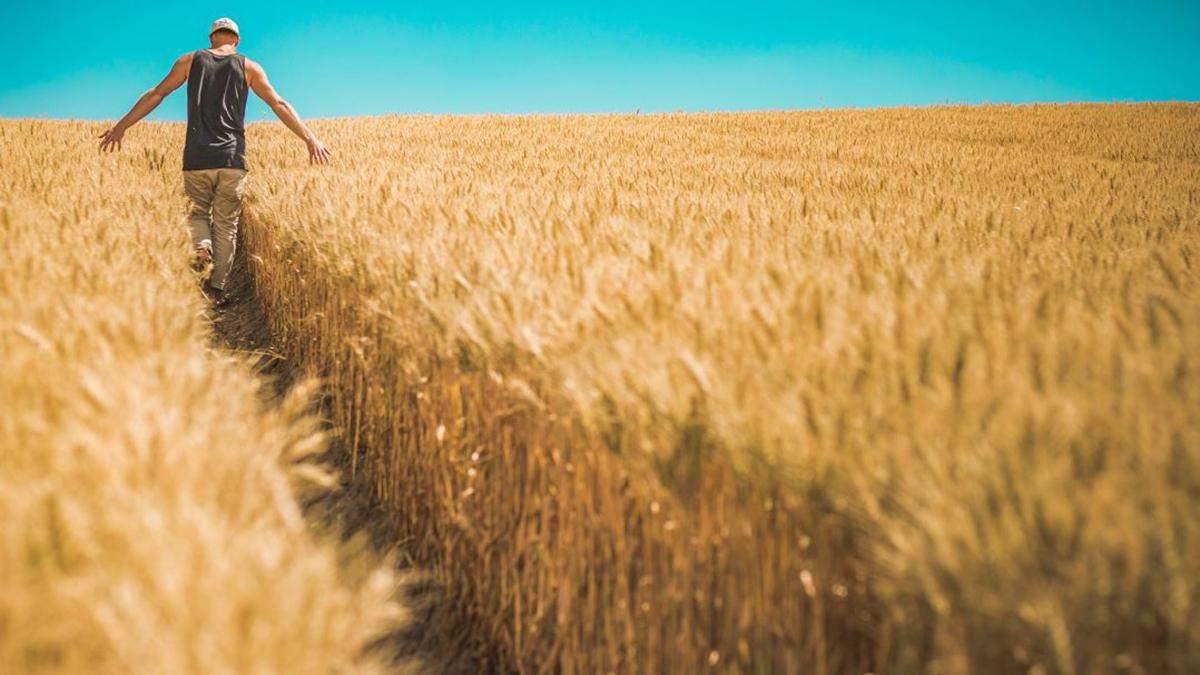 Хто зможе купити землю в Україні: законопроєкт №2178-10