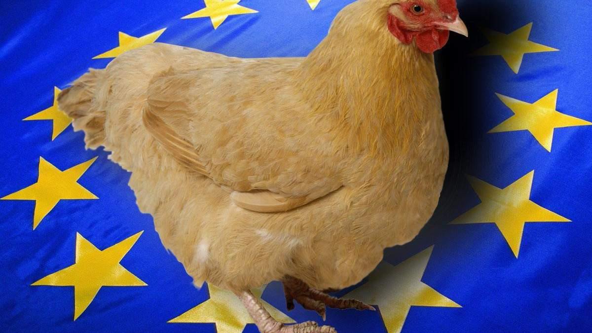 Україна відновить експорт курятини до ЄС