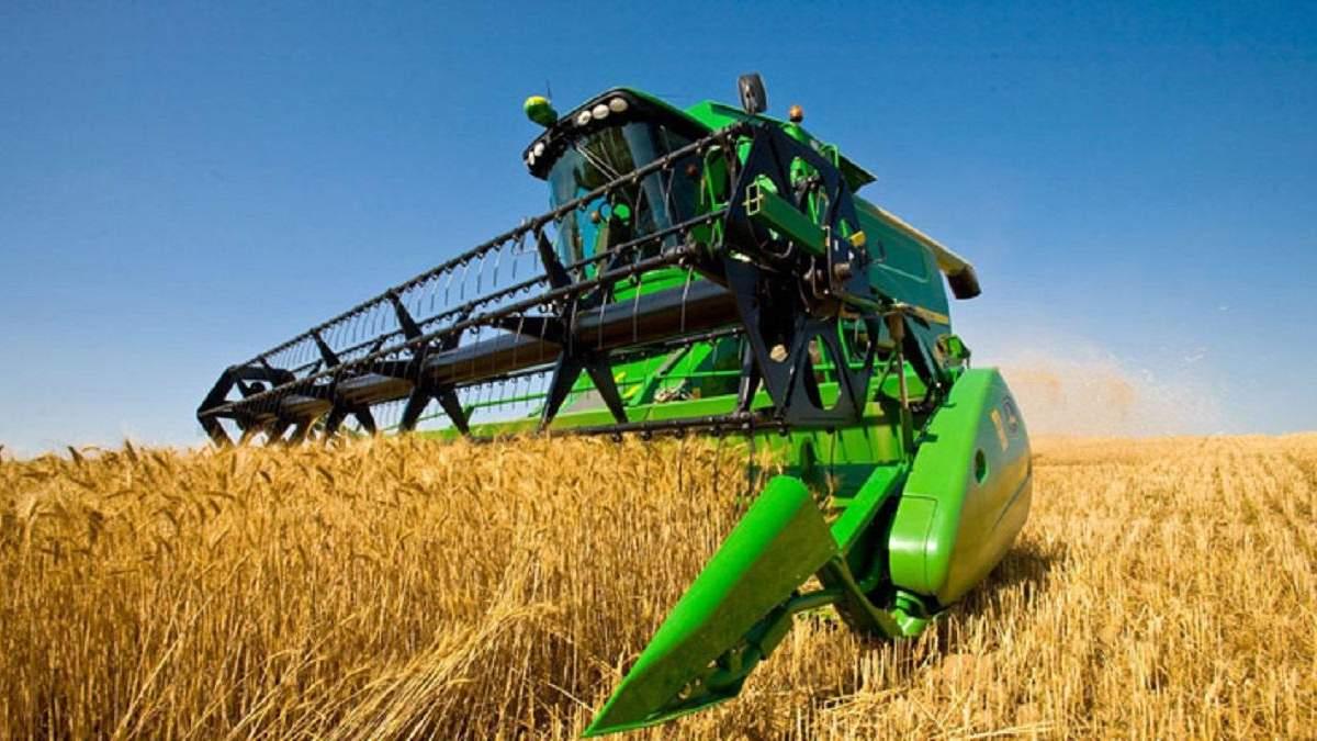Правительство отчиталось о запасах пшеницы в Украине