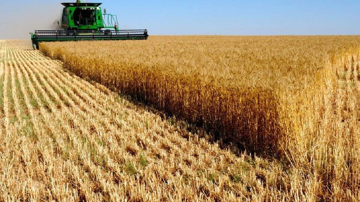 Україна буде з хлібом