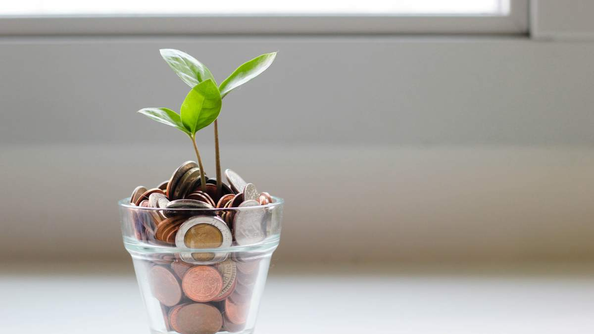 Куди інвестувати гроші в 2020: досвід успішних українців