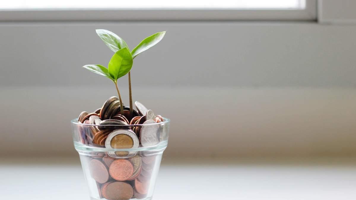 Куда инвестировать деньги в 2020: опыт успешных украинцев