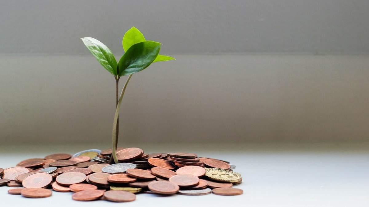 В Україні з'явиться Гарантований мінімальний дохід: чи було це умовою МВФ