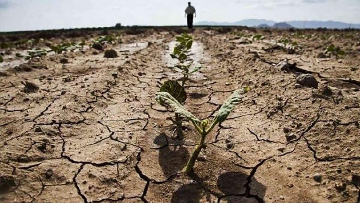Посуха в Україні влітку та восени 2020: проблеми з водою