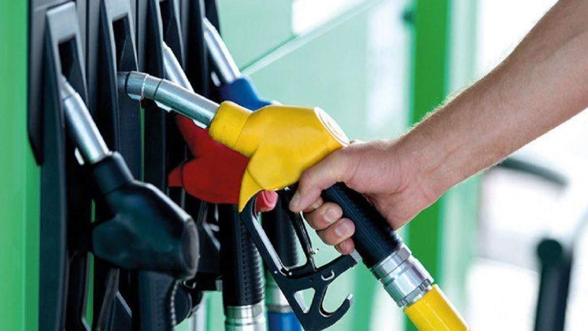 В Украине за год ощутимо подешевели почти все виды топлива