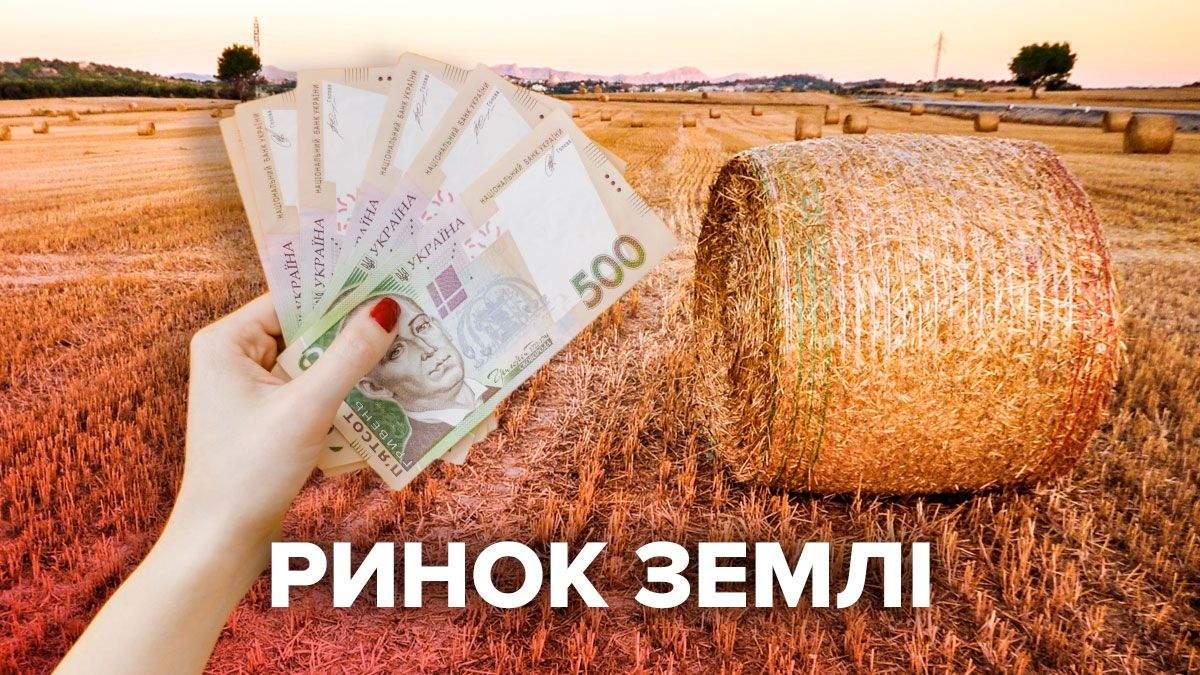 Рынок земли 2021 в Украине открылся: цена и прогноз