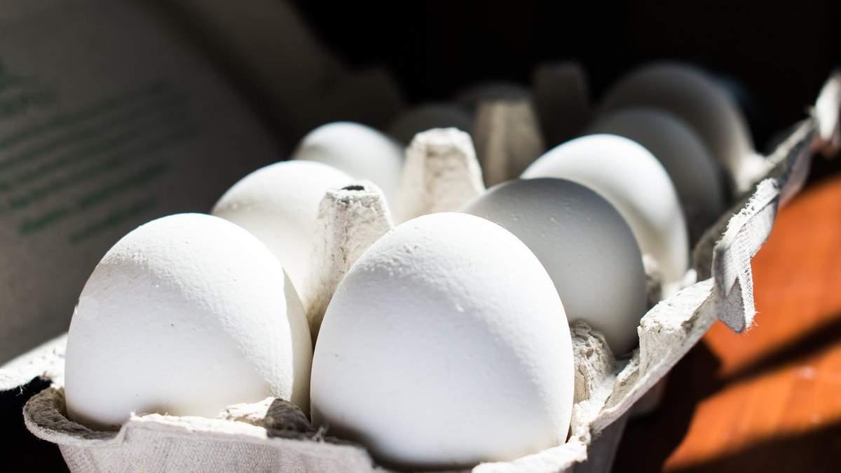 Ціна яєць в Україні