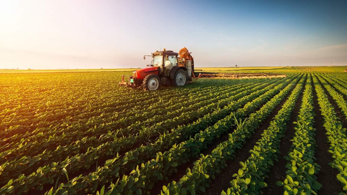 Украина попала в 4-ку стран по экспорту сельгосппродукции в ЕС