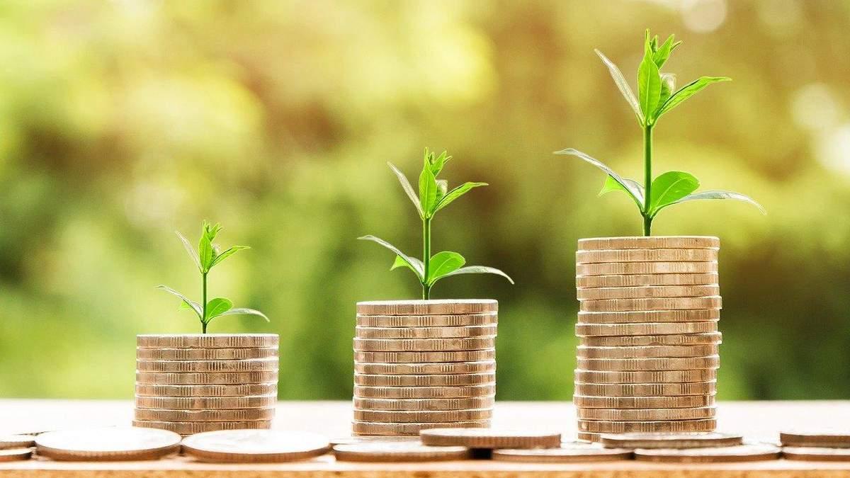 Чаты вместо чеков и сортировка мусора: как круговая экономика превращается в тренд - Экономические новости Украины - Экономика
