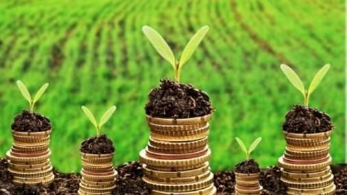 Открытие рынка земли: сколько удалось заключить соглашений от старта программы