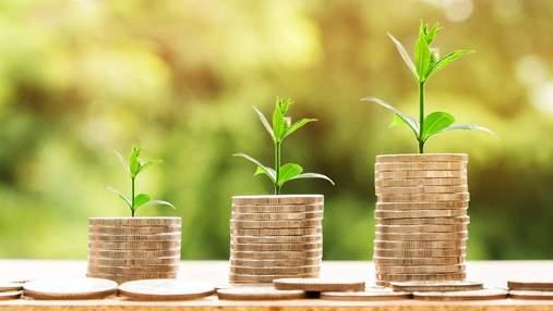 Чаты вместо чеков и сортировка мусора: как круговая экономика превращается в тренд